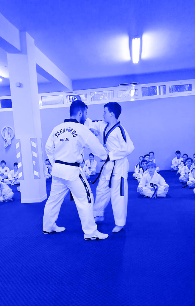 Taekwondo WT -1st & 2nd Gup Kibon (Basic Blocks, Strikes and Thrusts) #menoumespiti